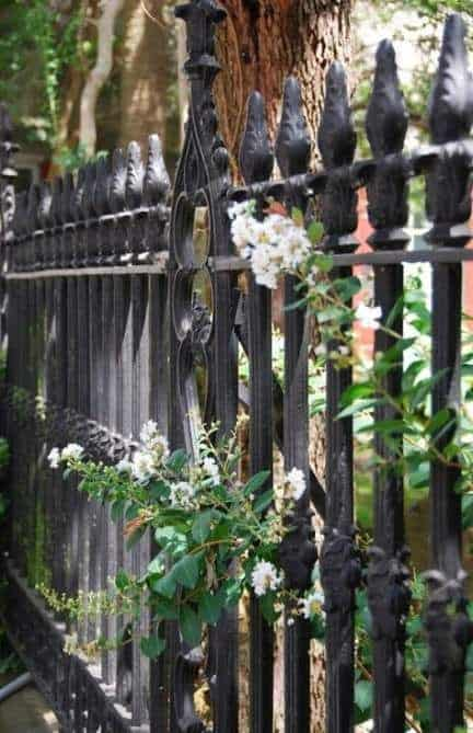 7 Best Fencing Materials : 7. Wrought Iron Fence