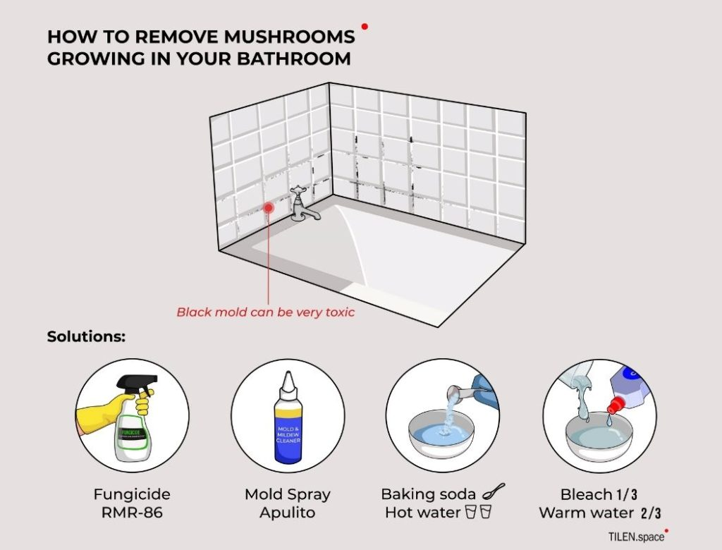 How to remove mushrooms growing from your bathroom